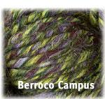 Berroco Campus™