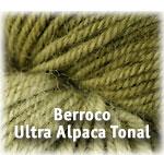Berroco Ultra Alpaca Tonal