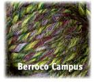 Berroco Campus